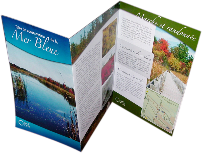 Looking for an inexpensive online print shop for a brochure ...